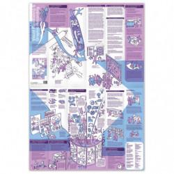Mapa de aprendizaje n. ° 4...